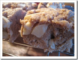 img 7035 thumb   Post Injury Exercise Plan (PIEP) + No Oil Apple Cake