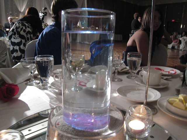 Project natural glow desert essence face wash oh she glows for Fish wedding centerpieces
