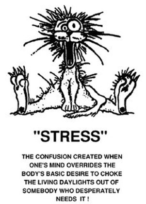 stress cartoon1copy thumb   10 Ways To Beat Holiday Stress