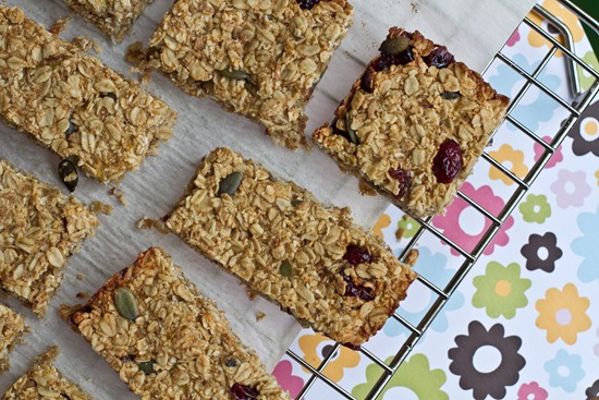 20101223IMG 7000 thumb   Healthy Banana Cranberry Oat Bars