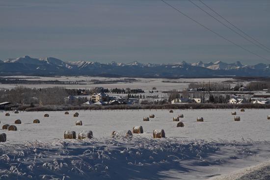 IMG 4141 thumb   Christmas in Alberta: Part 2