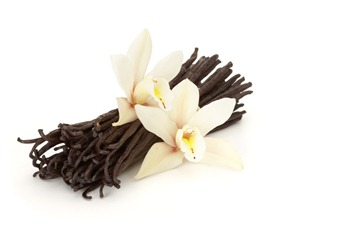 vanilla flowered