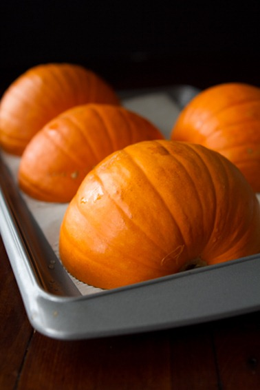 how to make pumpkin puree 5051   How To Roast A Sugar Pumpkin & Make Fresh Pumpkin Purée – A Step by step Photo Tutorial