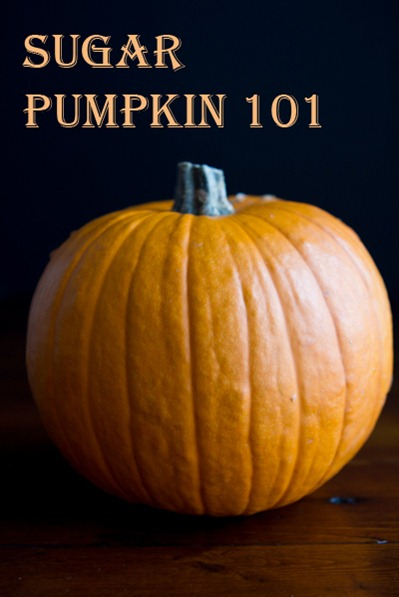 how to roast a pumpkin-4880