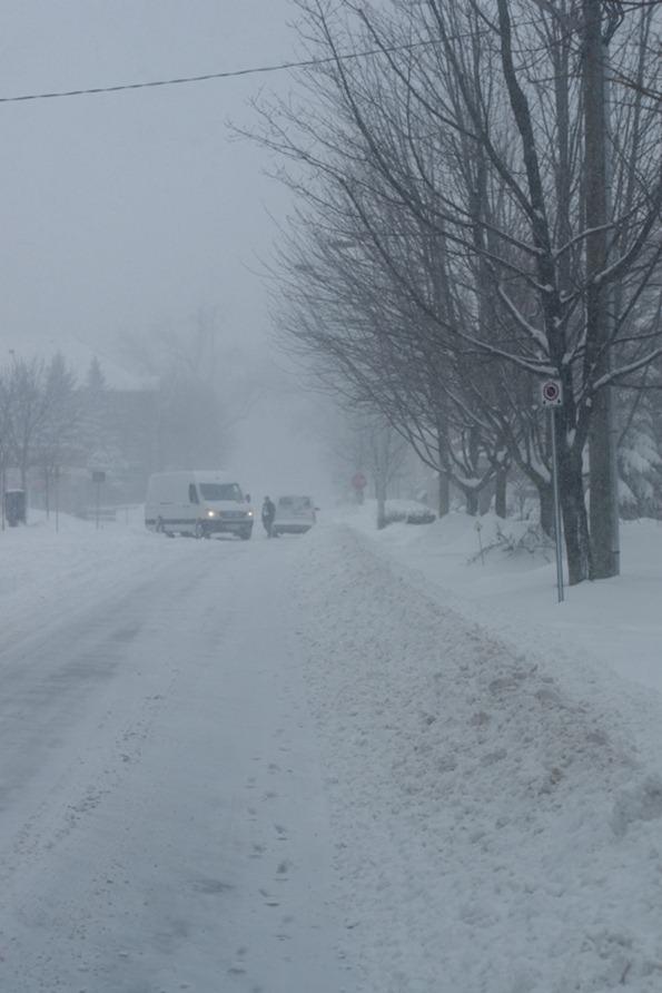 snow-2964